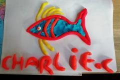 CM1-Charlie