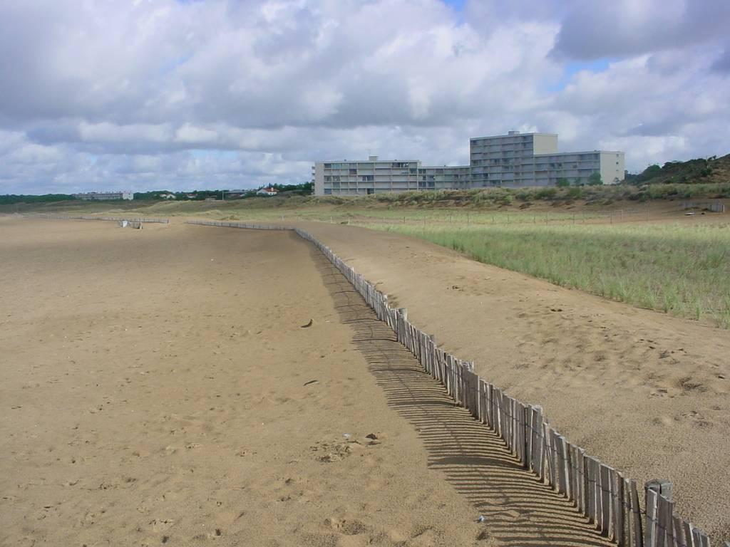 dune (5)